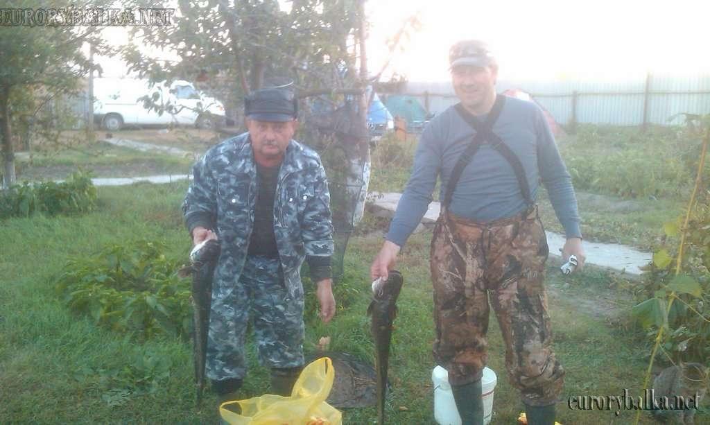Рыбалка декарями(кемпинг)в Астрахани